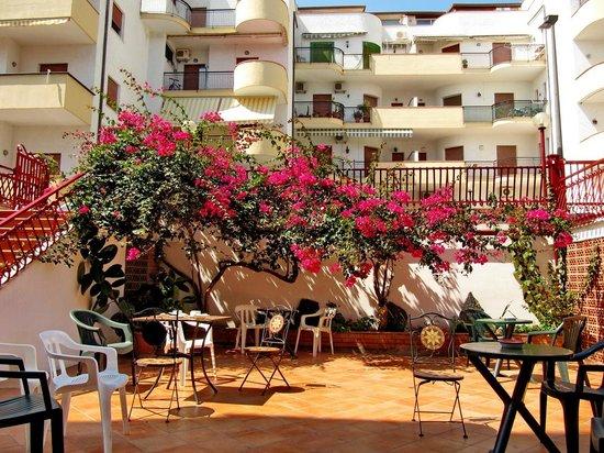 Hotel Alexander : garden