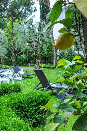 Hotel Piccola Vela: angolo di pace