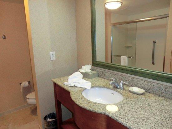 Hampton Inn & Suites Poughkeepsie: #428