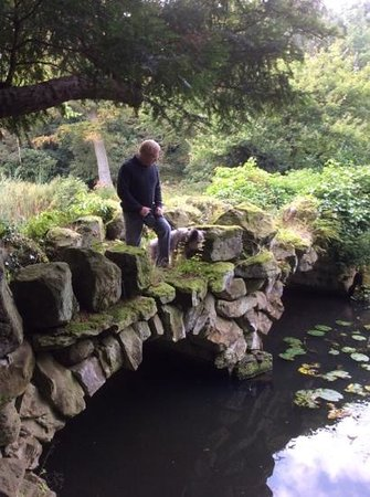 Swinton Park : one man and his happy dog
