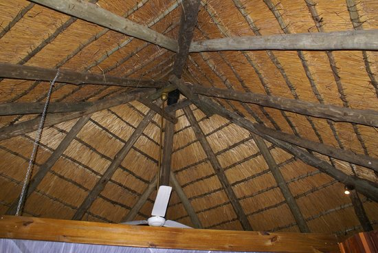 Shayamoya Tiger Fishing & Game Lodge: Thatched roof of chalet