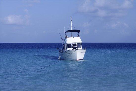 Captain Boots Curacao
