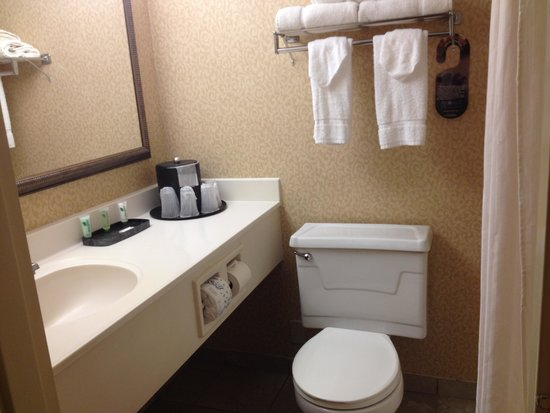 Lancaster Host Resort and Conference Center : bathroom