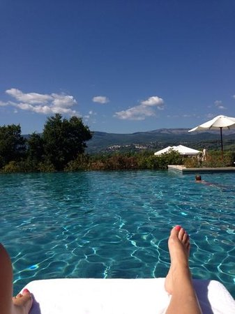 Terre Blanche Hotel and Spa : pool and view