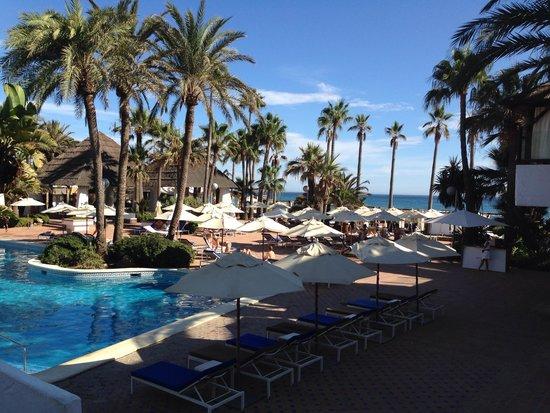 Don Carlos Leisure Resort & Spa : Очень красивая территория отеля