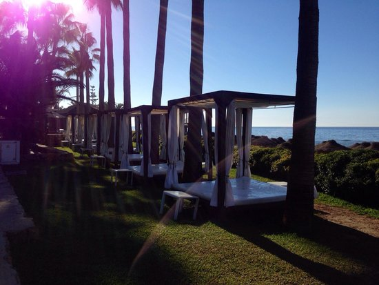 Don Carlos Leisure Resort & Spa : Территория отеля