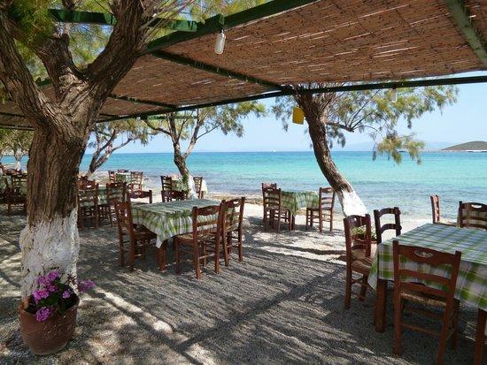 Taverna Manolis a Diakofti