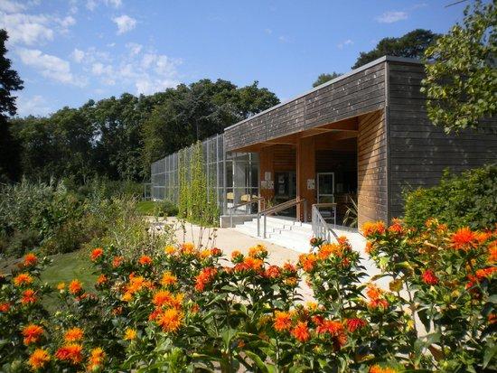 Chemille, ฝรั่งเศส: la maison Camifolia