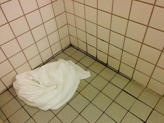 Hotel Selfoss: Mold in shower area