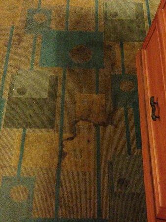 Motel 6 Grand Prairie - Interstate 30: Carpet in motel room was filthy