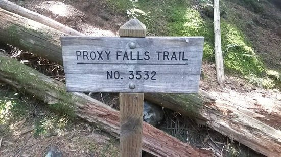 Proxy Falls: Main trail sign once you're on the trail