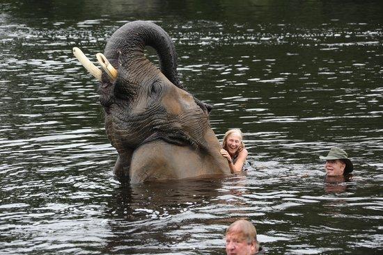 Myrtle Beach Safari Grandma S First Swim With Bubbles
