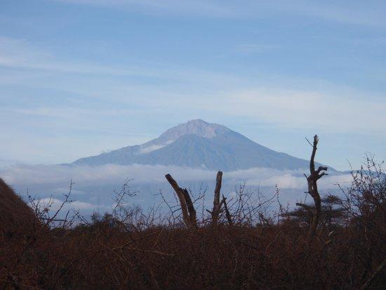 Olpopongi - Maasai Cultural Village & Museum: Mount Meru view