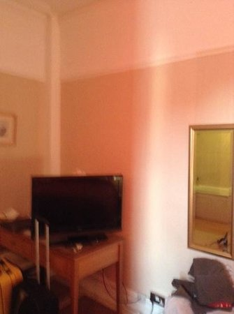Menai Bank Hotel: tv