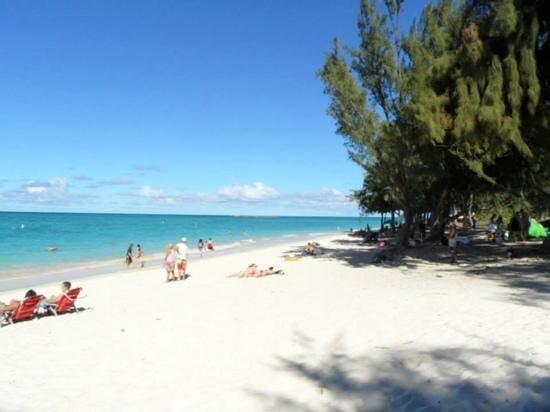Pillows in Paradise Bed & Breakfast : Kailua beach