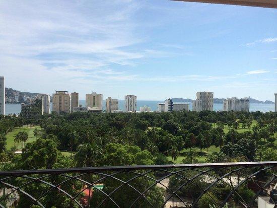 Real Bananas Hotel & Villas : vista desde la habitacion