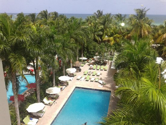 South Seas Hotel : Pileta vista desde la habitacion