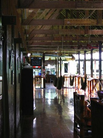 Tambopata Research Center : View of common area in front of rooms