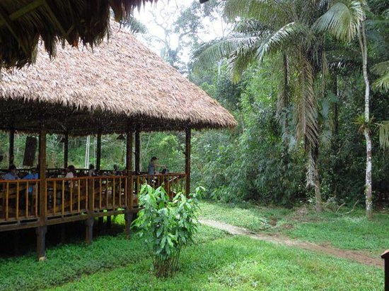 Tambopata Research Center: Corner of dining room