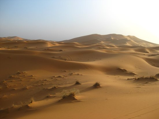Camel Excursions Morocco: Amazing view