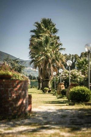 تورتوجا كازا فاكانزي: Giardino