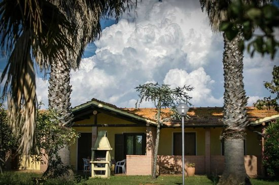 Tortuga Casa Vacanze: Giardino