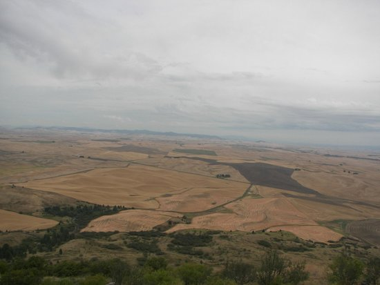 Colfax (WA) United States  City pictures : ... the world Picture of Steptoe Butte State Park, Colfax TripAdvisor