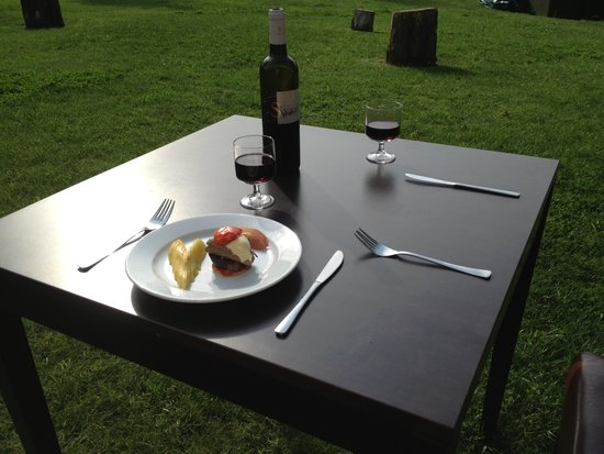 Cerise Carcassonne Sud: table on the grass