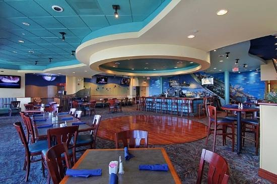 Dolphin Reef Restaurant: Great times, great food and great views!