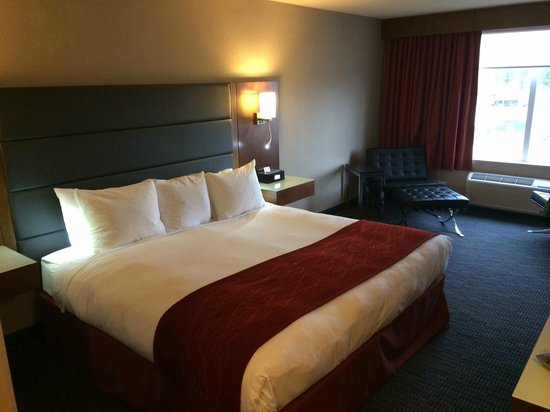 Radisson Hotel & Suites Fort McMurray: King Room