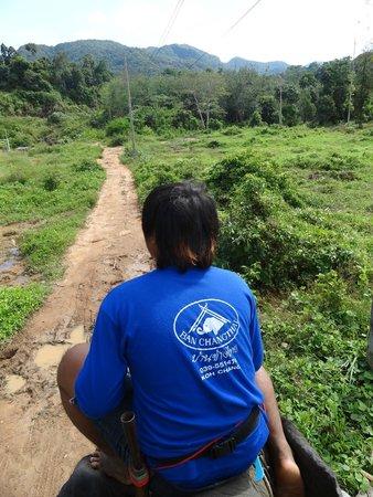Ban Chang Thai - Elephant Camp: nuestro guía