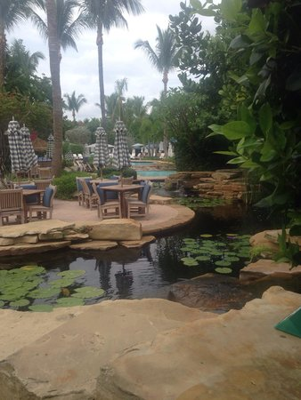 LaPlaya Beach & Golf Resort, A Noble House Resort: Pool area