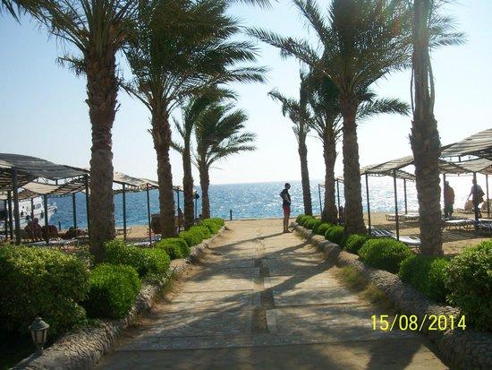 King Tut Aqua Park Beach Resort: Возле пляжа