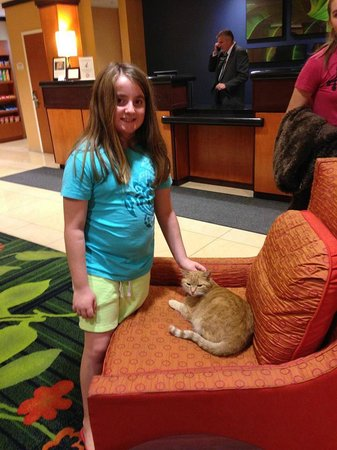 Fairfield Inn & Suites Redding: Our daughter with Jack the Hotel Cat.