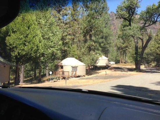 Yosemite Lakes RV Resort : Hillside Yurts placement