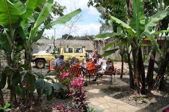 Guava Garden Lodge B&B: patio