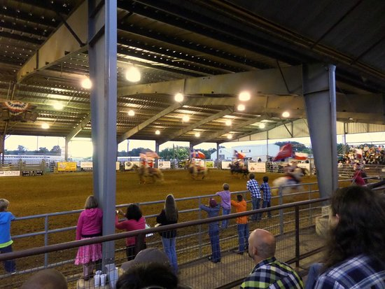 Rodeo Fun Picture Of Tejas Rodeo Company Bulverde