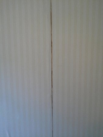 BEST WESTERN Radford Inn: Wallpaper in room.