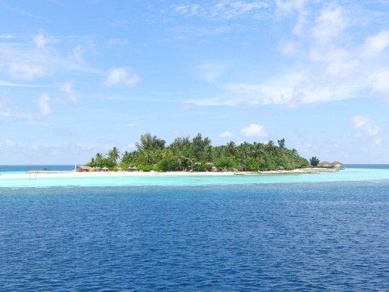 VOI Maayafushi Resort: MAAYAFUSHI