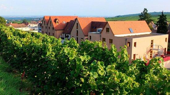 BEST WESTERN Hotel le Schoenenbourg : Rear of hotel from Schoenenbourg vineyard