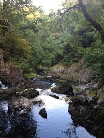 Swallow Falls (Rhaeadr Ewynnol): looking down the valley