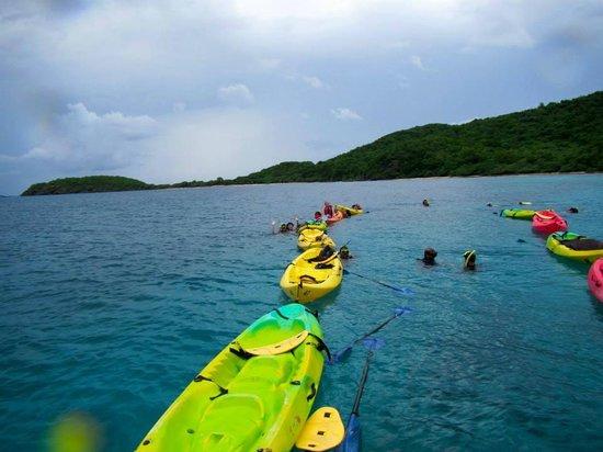 Kayaking Puerto Rico: Photos taken by the tour guides
