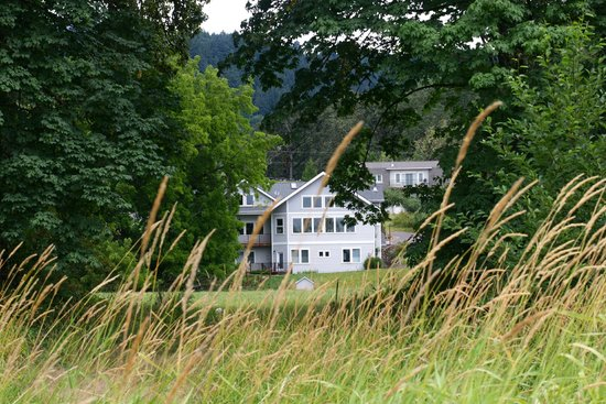 McKenzie Orchards Bed and Breakfast Inn: View from the riverside