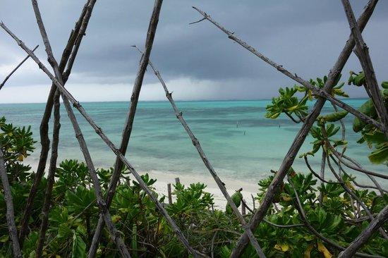 Pumzika Beach Resort: Sea