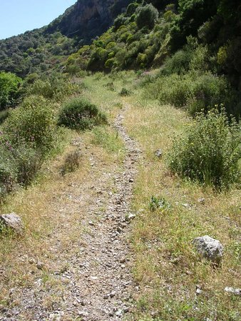 Topolia Gorge (Chania Town, Greece): Top Tips Before You ...