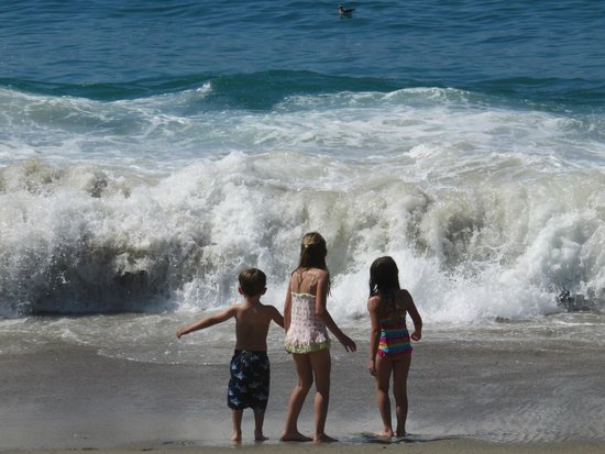 Aliso Beach Park : Wild waves