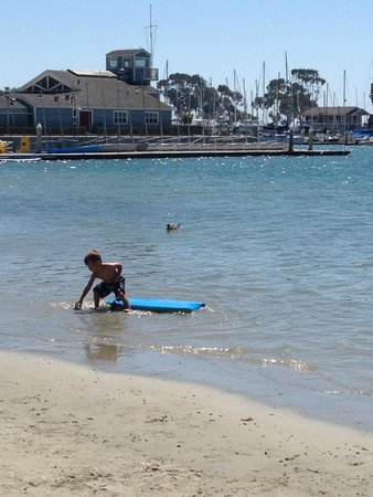 Dana Point, CA: A little guy and his board