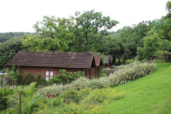 Stonewater Eco Resort : cabins