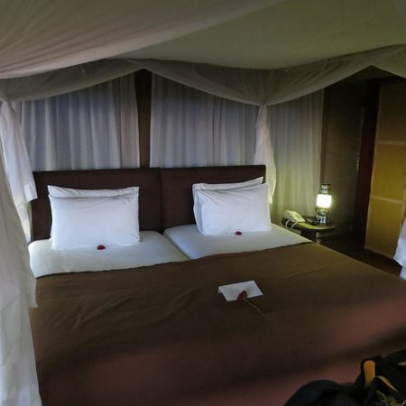 Serengeti Bushtops Camp : Our tent