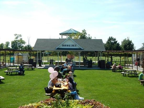 Pelee Island Winery : Great Place to Relax